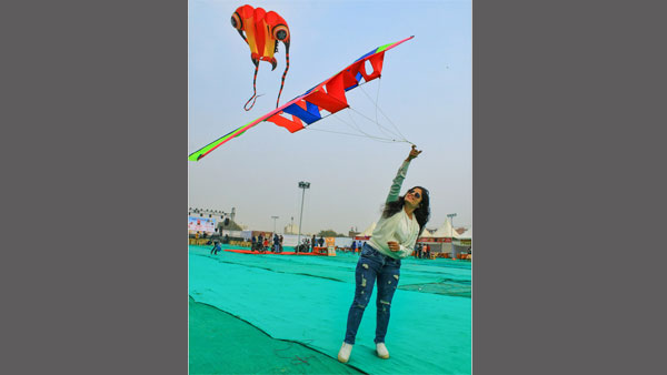 Kite sales soar high