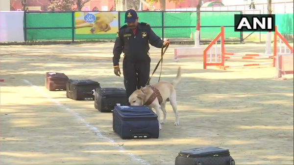 Indias first canine training centre comes up at Attari; Dogs to be trained on narcotics detection