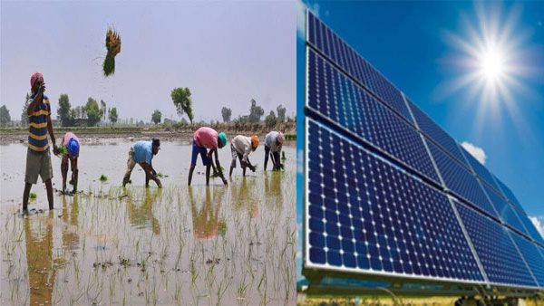 Budget 2020: Major focus on PM KUSUM scheme to cover 20 lakh farmers from solar power