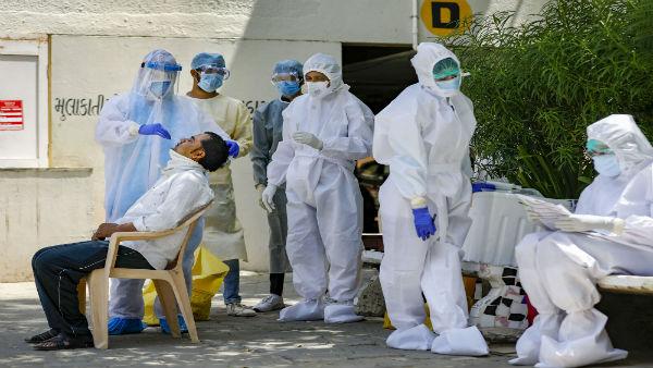 Rajasthan reports 242 new coronavirus cases