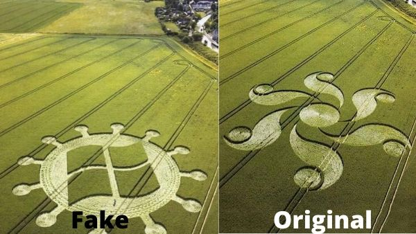 Crop circle combing symbols of coronavirus and Microsoft is fake