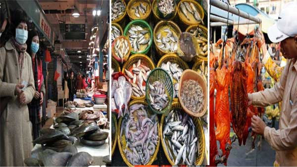 China finds heavy load of coronavirus in seafood, meat sections of Beijing wet market