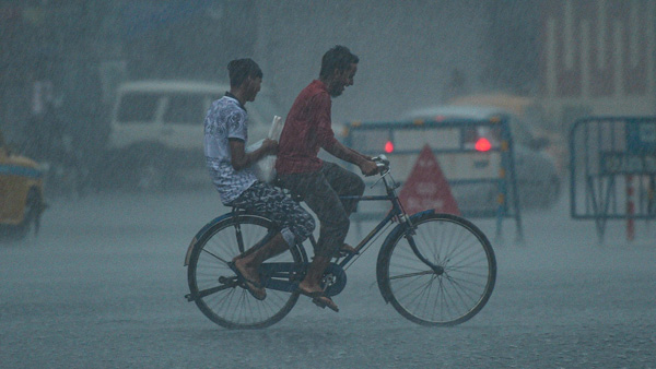 Heavy rains in Gujarat; West Coast to receive less rainfall in next 24-48 hours: IMD