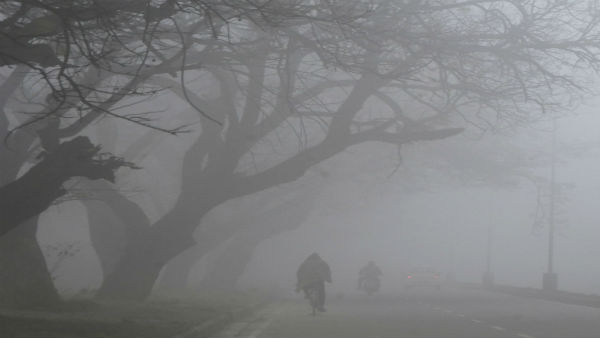 Dense fog cover parts of North India; affects visibility