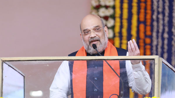 Country has rallied behind PM Modi in fight against COVID-19: Amit Shah