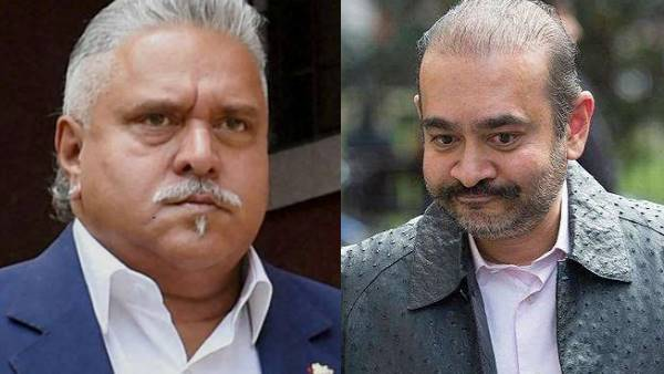 Expeditious extradition of Mallya, Nirav Modi from US sought