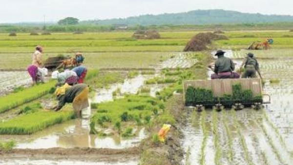 Decoding Budget 2021: How the new Agri Infra cess will not affect consumer