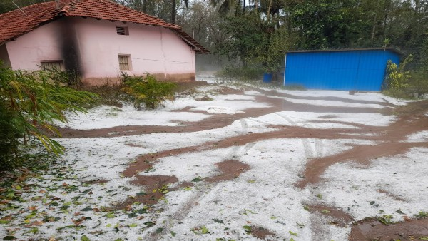 Hailstorm created fear among farmers