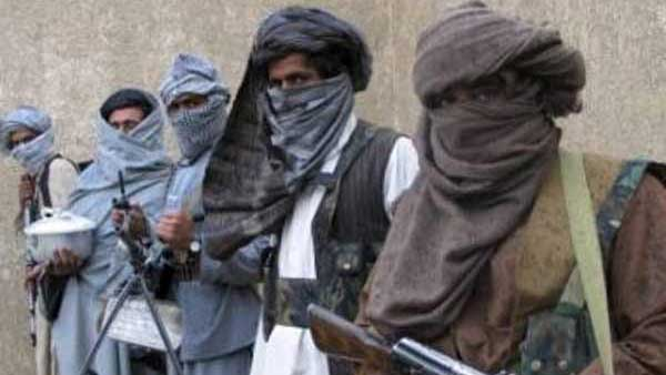 Pak Taliban responsible for over 100 cross-border attacks: UN