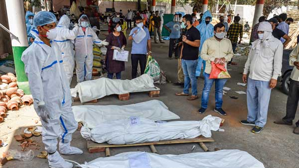 Record 395 deaths, 24k fresh COVID-19 cases reported in Delhi