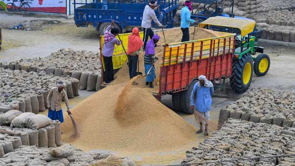Farm labourers in Punjab administered drugs to work longer: MHA in letter to state