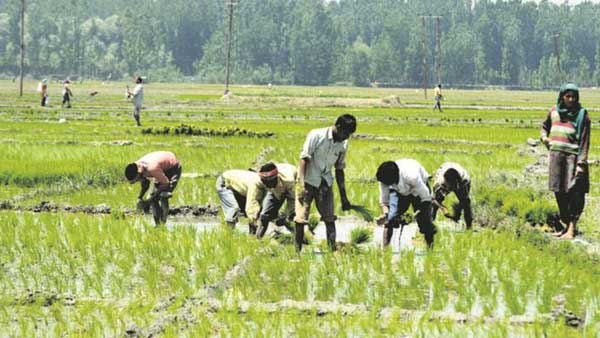 Punjab farmers not blamed over issue of Bonded Labourers in border villages:MHA