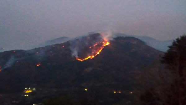 Try artificial rain to douse wildfires: Court to Uttarakhand government