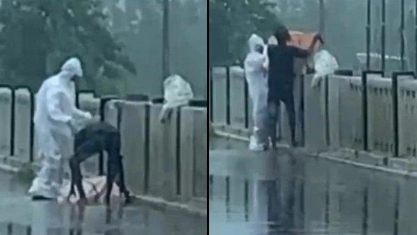 Shocking: Man in PPE kit dumps COVID patient's body in river in Uttar Pradesh, arrested
