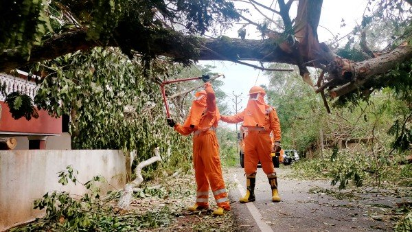 Cyclone Tauktae leaves behind trail of destruction in western India; 4 dead in Gujarat