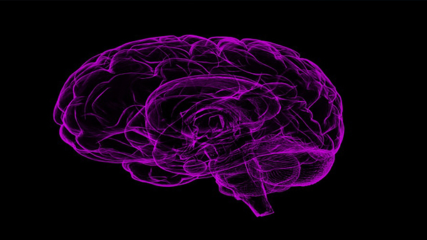 Long COVID-19 can lead to Alzheimer's disease: Study