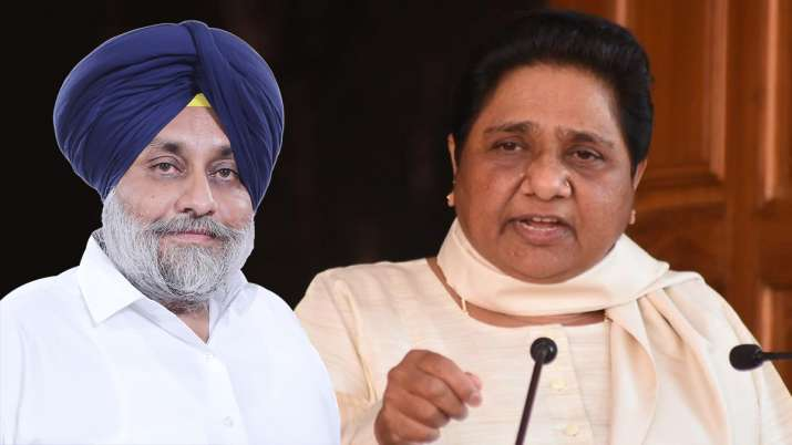 SAD-BSP to fight Punjab and future elections together