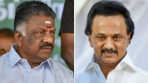 Vip Security Cover Of O Panneerselvam Mk Stalin Withdrawn 3011446.html
