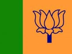 Nuclear Liability Bill Bjp Backs Govt Rajya Sabha