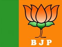 Tamil Nadu Bjp Fields State Vice President Subramaniam Srirangam Bypoll