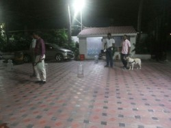 Crude Bombs Hurled At Tamil Tv Channel S Office