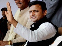 We Will Rescue Elephants Up Cm In Dig At Bsp Symbol