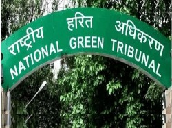 Delhi Govt Worried About Everything Except Environment Ngt