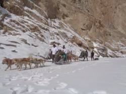 Why Are Buddhists Up In Arms Against Muslims In Ladakh