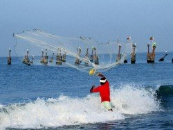 Fishermen Released Sri Lanka 7 Member Team From Tn Inspect