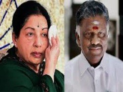 History Repeats When Aiadmk Fought With Cock And Two Pigeons