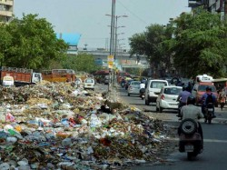 More Garbage Than Land For People In Delhi High Court