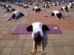 Himachal 11 Students Set Record In Performing Yoga Asanas For Long Duration