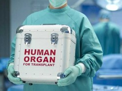 Family Donates Brain Dead Mans Organs To Save Four Lives In Maharashtra