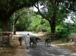 Haryana Centre Approves Changing Embarrassing Names Villages