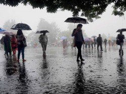 Weather August 20 Forecast Stormy Weather Likely Delhi