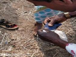 No End Struggle Maharashtra Farmers 300 Admitted At Mumbai