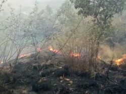 Massive Forest Fire Breaks In Tamil Nadu 20 Students Trapped