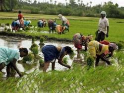 India Grow At 7 4 Per Cent 2018 Imf