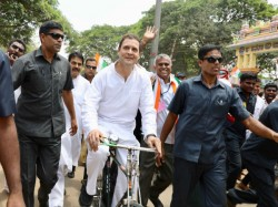 Why From Fans Haters Nobody Can Stop Wishing Rahul Gandhi On