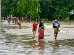 Assam Floods Situation Grim 23 Dead