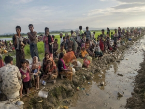 Who will take care of 14,000 Rohingya orphans?