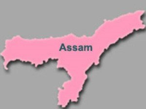 Bjp Comes Under Fire From Bodos Ex Cm In Assam