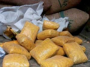 Debate Punjab Drug Menace Glaring Truth