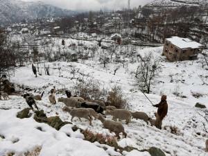 Jammu Srinagar Highway Opens Partially