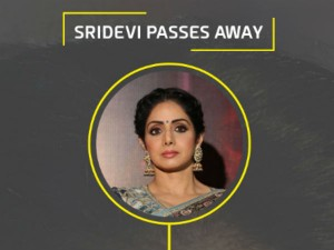 Some Lesser Known Facts About The Screen Icon Sridevi