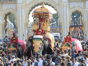 How Majestic Jumbos Are Groomed For Jamboo Savari