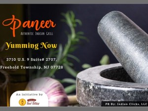 Godavari Launches Their New Brand Paneer The Mall Concept Food Court