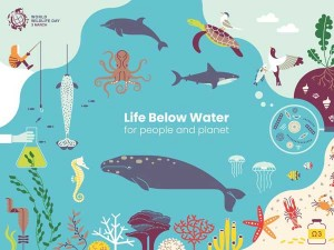 World Wildlife Week Life Below Water Matters