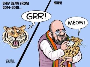 BJP tames the roaring tiger