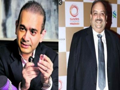 ED seeks Interpol notice against Modi